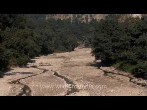 Dried seasonal stream and Shivalik ridges at Rajaji National Park
