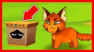 ГИЛЬДИЯ КОТИКОВ #3 КОТЫ ВОРИШКИ в Castle Cats про милых котов