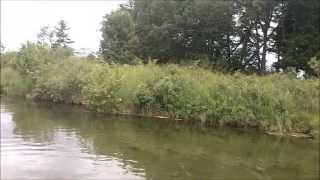Creek smallmouth fishing with tubes