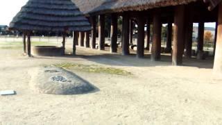 弥生時代・復元建物(大型掘立柱建物)・池上曽根史跡公園