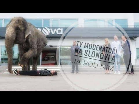 TV moderátoři nám šplhali na Slona