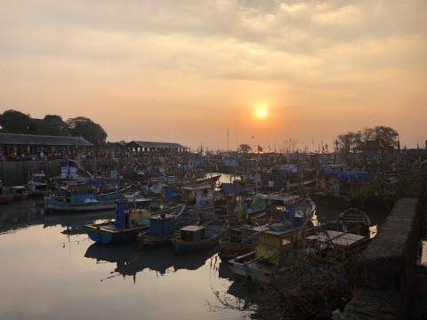 Visit To A Sassoon Dock In Colaba(South Mumbai)