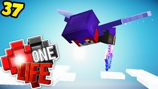 Being dumb on an ELYTRA - Minecraft One Life SMP EP37