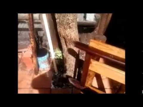 RESTAURACIÓN DE MUEBLE DE JARDIN POR EL SISTEMA SJJM - YouTube