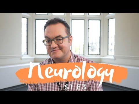 how-much-do-neurologists-get-paid?-(s1-|-e3)-neurology