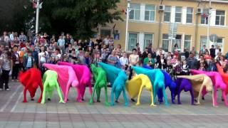 """Победители Больших танцев! Танцевальный ансамбль """"NEXT"""" г. Елань"""