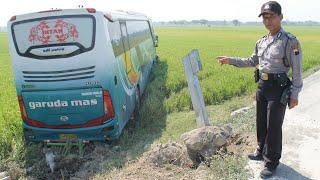 Warga Sragen Di Kejutkan Dengan Bus Garuda Mas Masuk Sawah Petani