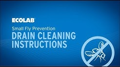 Small Fly Prevention Drain Cleaning Instructions
