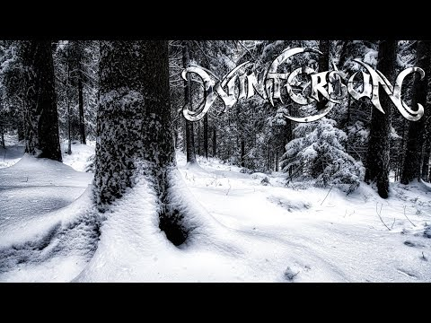 Wintersun - Loneliness (Winter) | Acoustic/Synth Version
