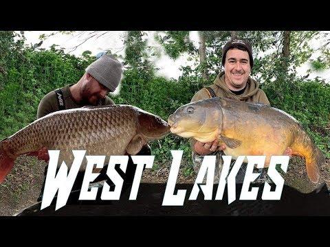 First Session Back On West Lakes. *CARP FISHING* 30+ UK