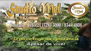 MPB Admirável Gado Novo - Curso de Canto