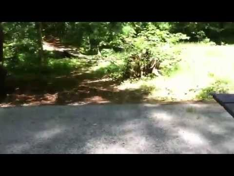 White Lake State Park Campground- Tamworth, NH -waterfront campsite W-13