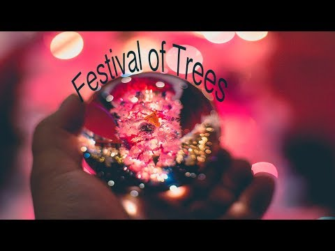 Knoxville Festival of Trees