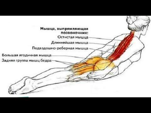Шейный остеохондроз. Симптомы и лечение
