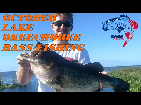 October Lake Okeechobee Bass Fishing Charters