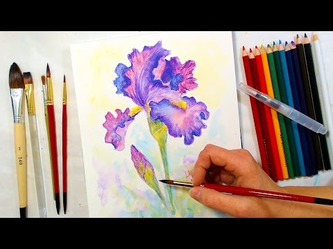 Iris Watercolor Pencil Drawing and Painting Tutorial // December Smart Art Box