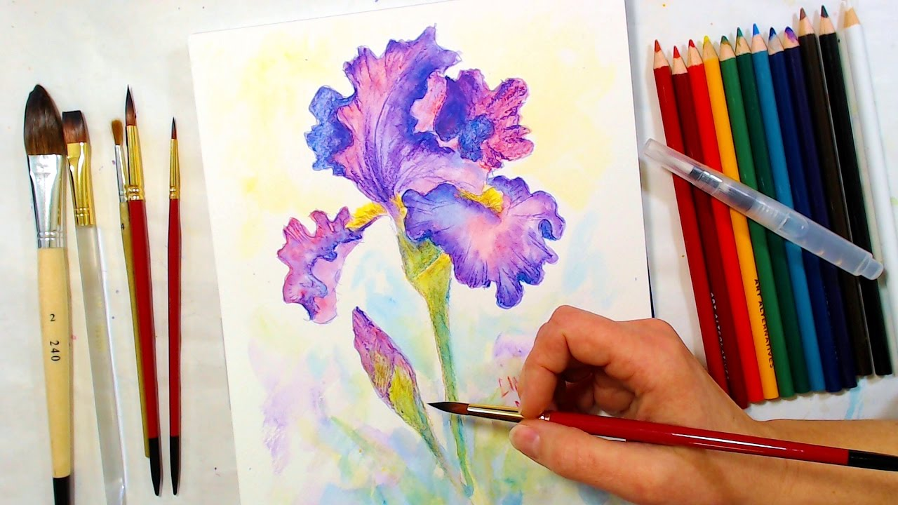 Water Color Pencil Art