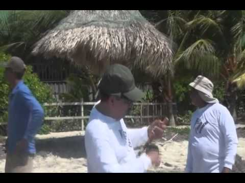 Hotel Guanaja Fishing