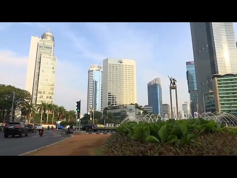 France 24:Indonesia has plans to move capital from sinking Jakarta to Borneo