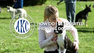 How Do I Get Started Showing Dogs? | Intro to AKC Dog Sports