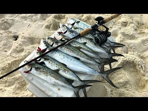 Light Tackle Surf Fishing In Rough Conditions