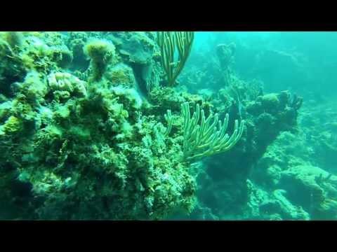 Green Turtle Key, Bahamas