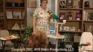 The Wisdom Of Parrots