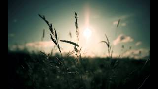 Alexander Xendzov feat Claire Willis - Follow The Sun (Sergey Shabanov Remix)