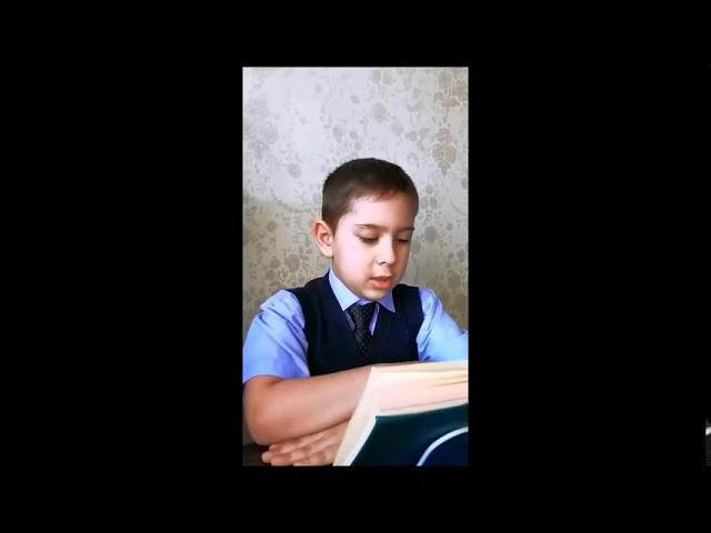 Изображение предпросмотра прочтения – АртемЧуркин читает произведение «Крохотки: Шарик» А.И.Солженицына