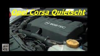 Opel Corsa D 1,3 CDTI Quietscht                        Teil 1