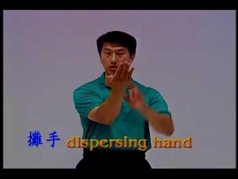 VTM Ip Man Instructional Series  Siu Nim Tau