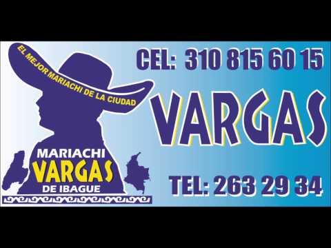 Donde están esos amigos (Mariachi Vargas de Ibagué).