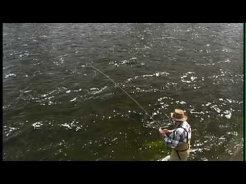 Fly Fishing Salmonflies - Yellowstone National Park