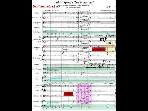 Also Sprach Zarathustra. Richard Strauss. Orquesta.