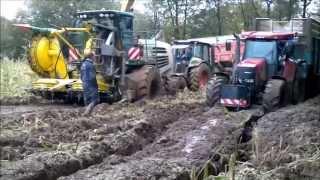 ensilage maïs 2012 manche
