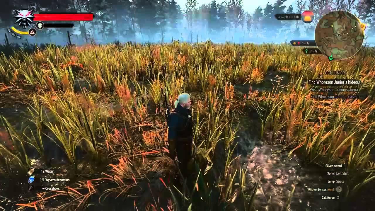 The Witcher 3, Location Respawn Fiend lev 16, Farming,Mutagen,Xp