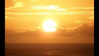 Последствия: Преданные Солнцем. National Geographic (Научная фантастика)