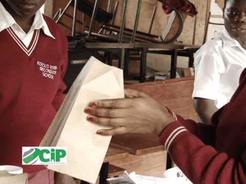 CIP Skills Clinic - Paper Bags