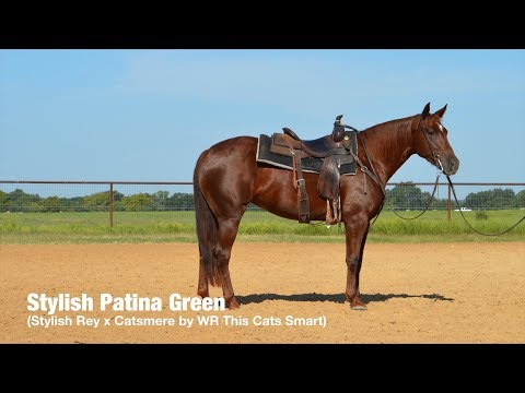 Stylish Patina Green (Stylish Rey x Catsmere by WR This Cats Smart)