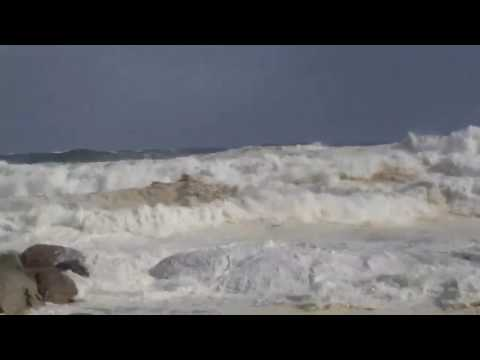 Gale-Force Winds Batter Cape Town Coast During Fatal Storm