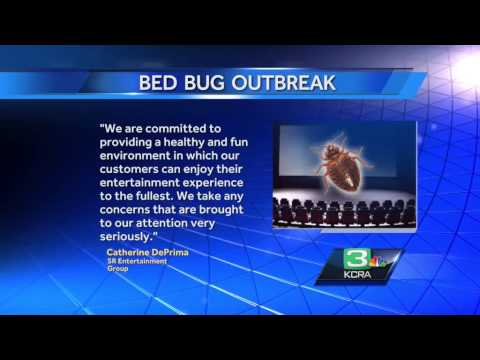 City: Lodi theater knew of bedbug problem previously
