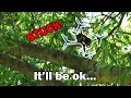 Tree Rescue + Awesome Park Flight Session - Ricker Life FPV