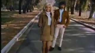 NANCY SINATRA & LEE HAZLEWOOD-SUMMER WINE