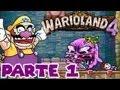 Wario Land 4 | Guía: Parte 1 | La Berenjena Gigante