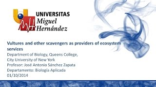 Vultures and other scavengers as providers of ecosystem services