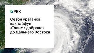 Сезон ураганов: как тайфун «Талим» добрался до Дальнего Востока