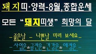 돼지띠 -신축년 양,8월운세, 좋은날,나쁜날, 010/4258/8864