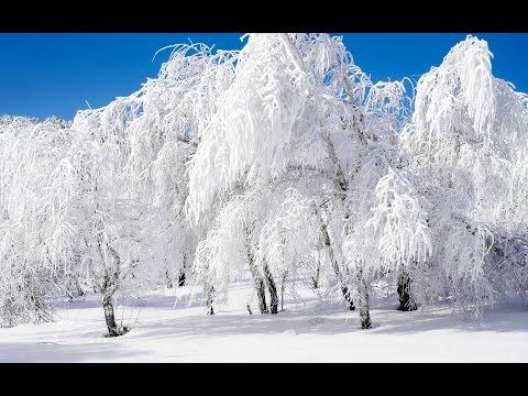 Зимний пейзаж .Фото
