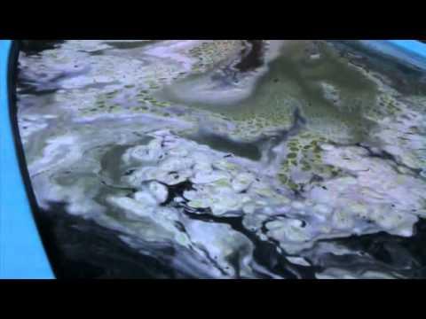 Como limpiar una alberca verde parte una de dos doovi for Clorador salino casero