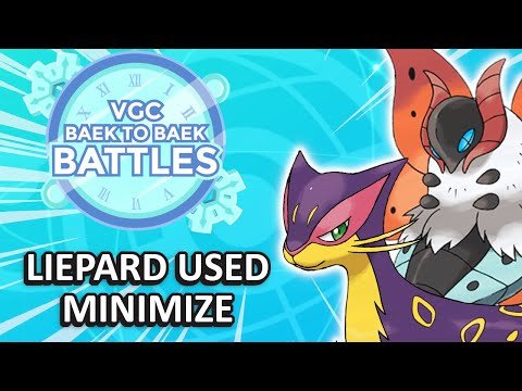 These Series 8 Support Pokemon ARE AMAZING   Series 8 Ranked Battles